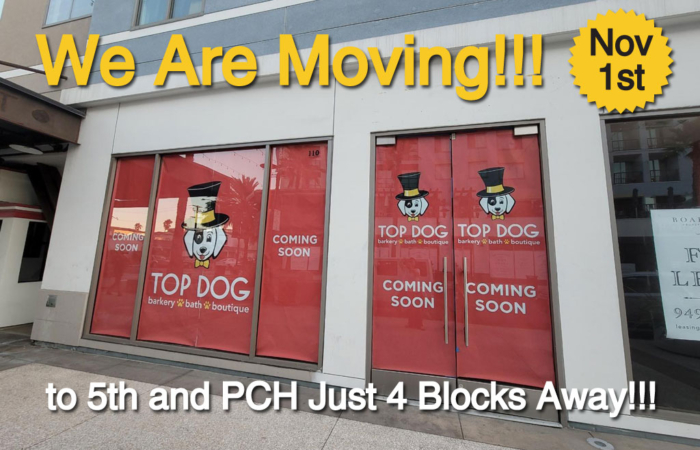 We are moving November 1st to 5th and PCH just 4 blocks away