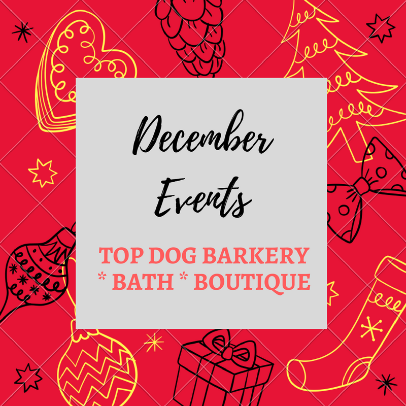 Top Dog Upcoming Events